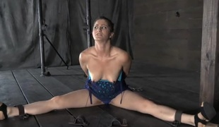 Fast teasing for beauty's teats and lusty shaved cunt